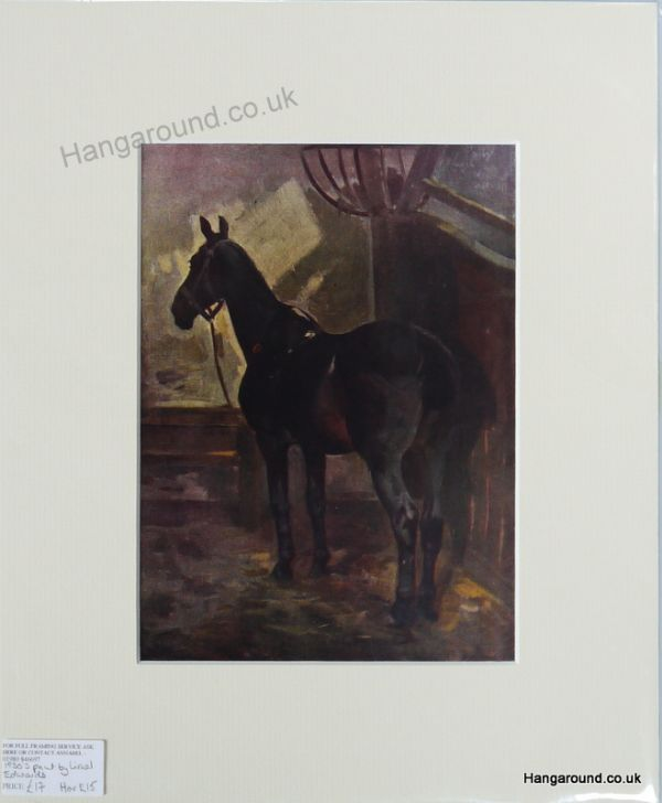 Bay Horse in Stable - Lionel Edwards - Hor E15